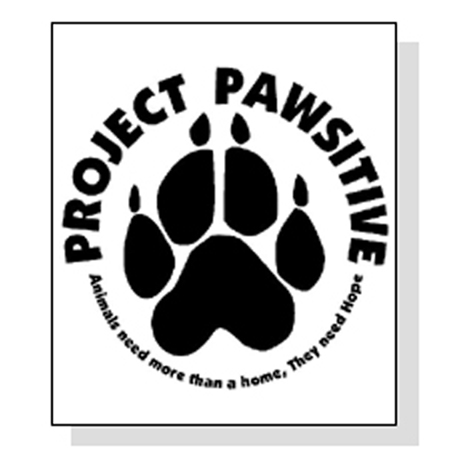 Project Pawsitive (Social Media Client)